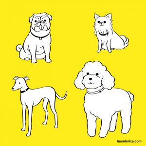 いぬのきもち 犬イラスト